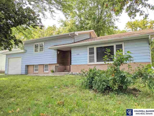 1241 Bessie Street, Goehner, NE 68364 (MLS #22023572) :: Omaha Real Estate Group