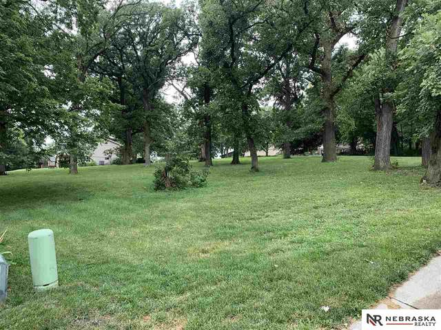 Buccaneer Bay Lot 8, Plattsmouth, NE 68048 (MLS #22023761) :: The Briley Team