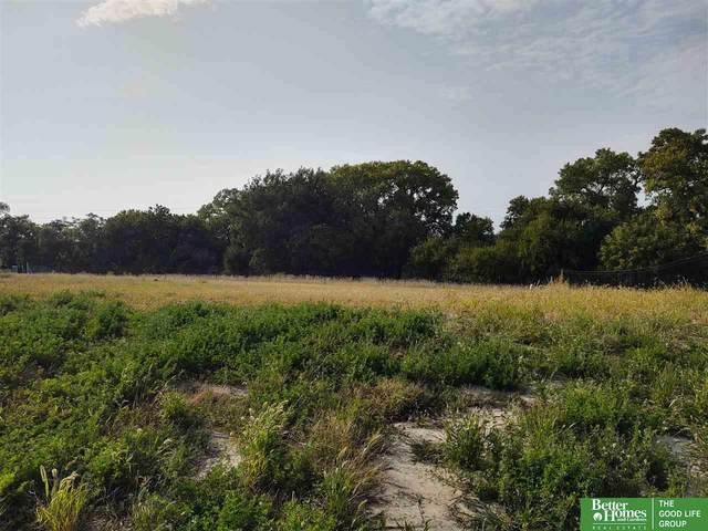 3930 S 213 Avenue, Elkhorn, NE 68022 (MLS #22023963) :: Dodge County Realty Group