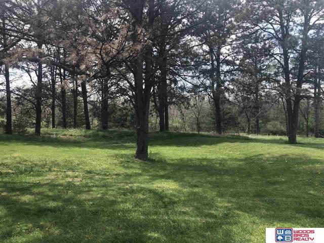 21603 Deer Haven Trail, Eagle, NE 68347 (MLS #22027947) :: Omaha Real Estate Group