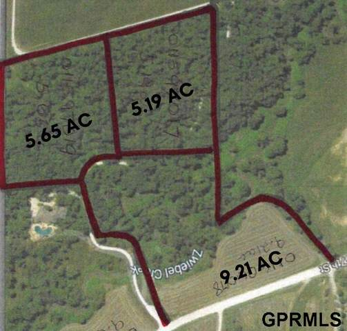 Castels First Addition Lot 1 Replat 1, Papillion, NE 68133 (MLS #22028660) :: Complete Real Estate Group