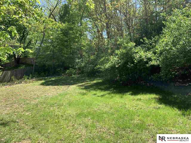 Plattsmouth On The Green Lot 10, Plattsmouth, NE 68048 (MLS #22030357) :: Don Peterson & Associates