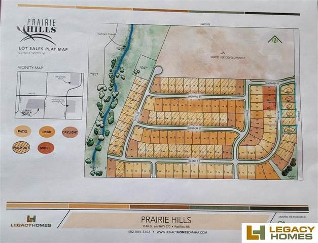 11219 S 114th Avenue, Papillion, NE 68046 (MLS #22100502) :: Omaha Real Estate Group