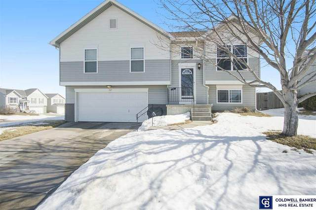 7517 N 108 Avenue, Omaha, NE 68142 (MLS #22102956) :: Omaha Real Estate Group