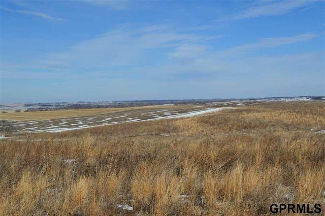 1180 County Road 21 Road, Wahoo, NE 68066 (MLS #22103102) :: Complete Real Estate Group