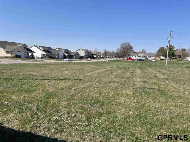 2700 Silver Street, Ashland, NE 68003 (MLS #22106447) :: Capital City Realty Group