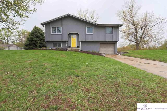 4101 N 213 Circle, Elkhorn, NE 68022 (MLS #22107820) :: Berkshire Hathaway Ambassador Real Estate