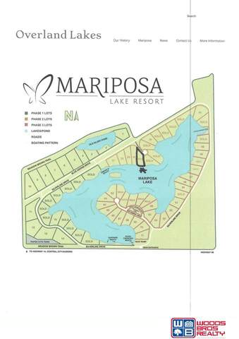 Lot 31 Woodwhite Drive, Marquette, NE 68854 (MLS #22108029) :: Capital City Realty Group