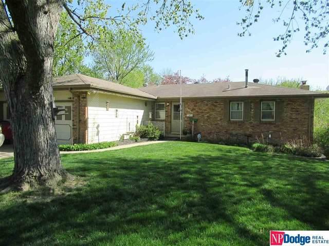 803 Hogan Drive, Papillion, NE 68046 (MLS #22108950) :: Dodge County Realty Group