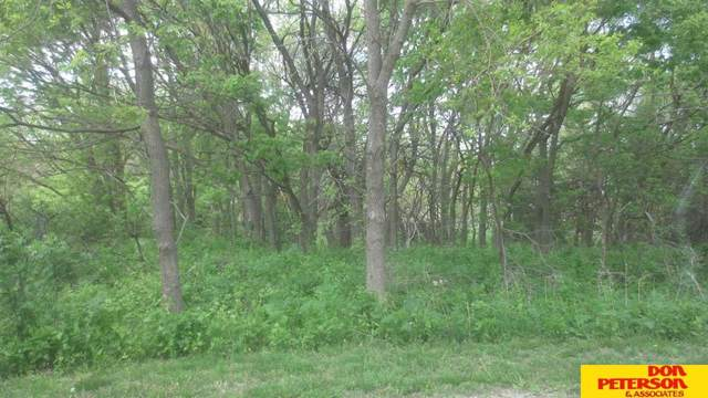 Lot 49 Tepee Circle, Fremont, NE 68025 (MLS #22110303) :: Lincoln Select Real Estate Group