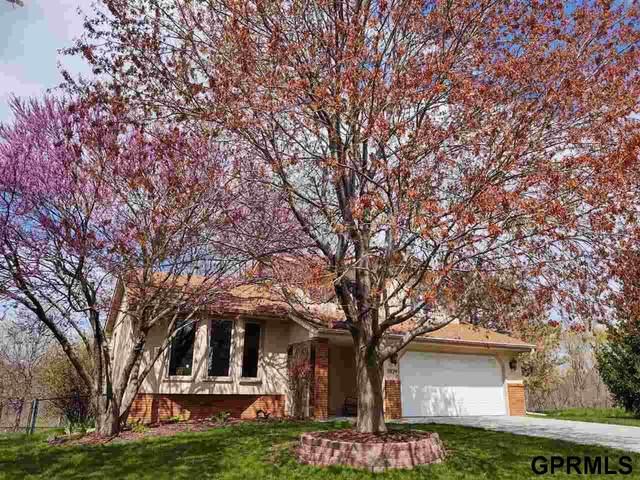 5924 N 131St Street, Omaha, NE 68164 (MLS #22113740) :: Don Peterson & Associates