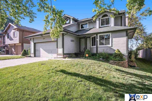 1201 Terry Drive, Bellevue, NE 68123 (MLS #22113783) :: Omaha Real Estate Group