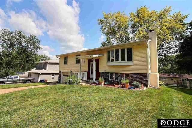 2105 Randall Drive, Bellevue, NE 68005 (MLS #22116601) :: Omaha Real Estate Group
