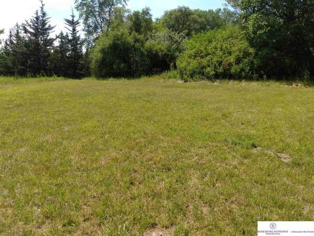 Lot 6&11 March Hare And Tea Party Lane, Blair, NE 68142 (MLS #22116704) :: Capital City Realty Group