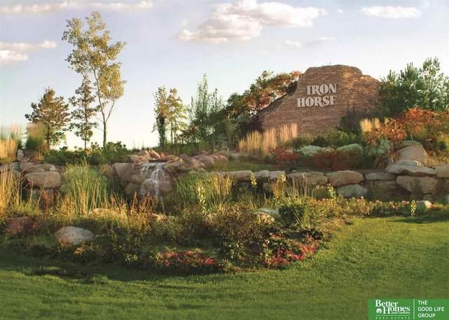 1674 East Ridge Way, Ashland, NE 68003 (MLS #22116943) :: The Briley Team