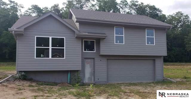 2822 Krejci Boulevard, Blair, NE 68008 (MLS #22116988) :: Omaha Real Estate Group