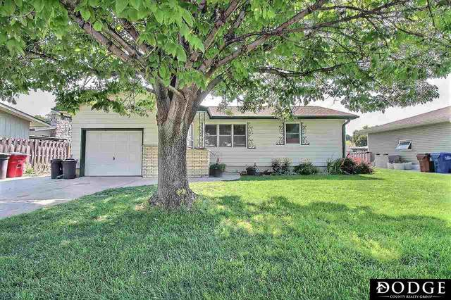 230 N Downing Street, Fremont, NE 68025 (MLS #22117442) :: Dodge County Realty Group