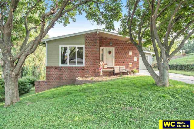 3035 College Drive, Blair, NE 68008 (MLS #22119617) :: Elevation Real Estate Group at NP Dodge