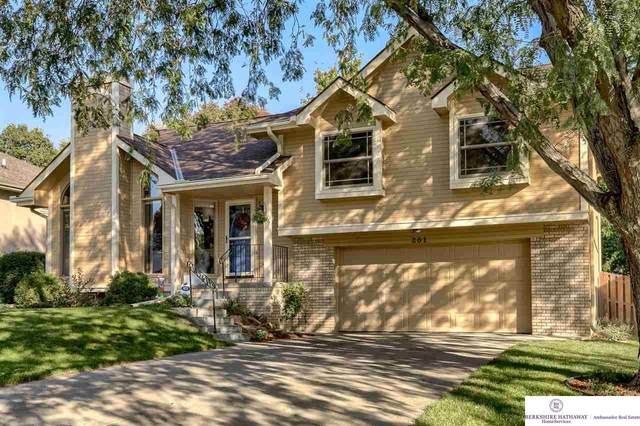 201 Carolina Drive, Papillion, NE 68133 (MLS #22124431) :: Lincoln Select Real Estate Group
