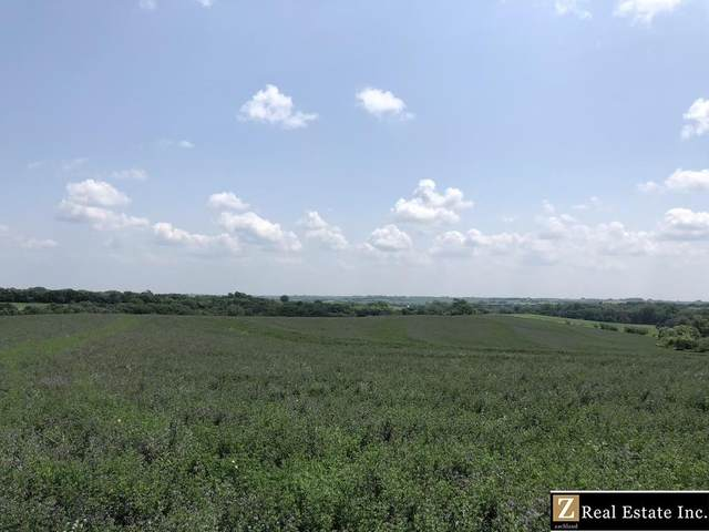Saunders County Acreage 1 County Road, Prague, NE 68050 (MLS #22124782) :: Lincoln Select Real Estate Group