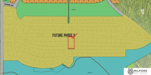 Lot 207 S Pioneer View, Papillion, NE 68133 (MLS #22124861) :: The Briley Team