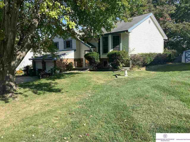 1103 Sterling Drive, Papillion, NE 68046 (MLS #22124872) :: Dodge County Realty Group