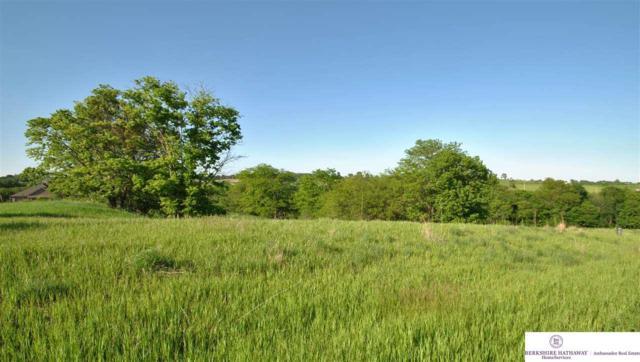 46 CR 37 Cottonwood Creek, Blair, NE 68008 (MLS #21621563) :: Omaha Real Estate Group