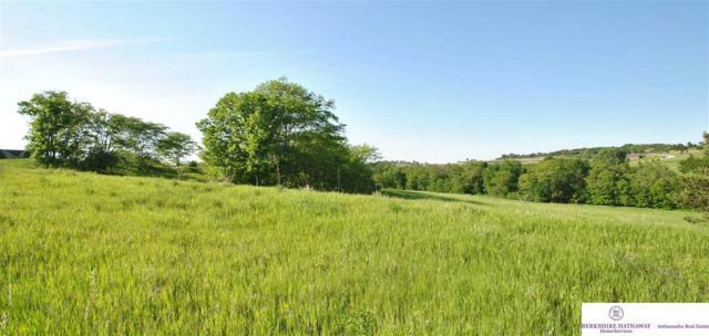 38 CR 37 Cottonwood Creek, Blair, NE 68008 (MLS #21621564) :: Omaha Real Estate Group