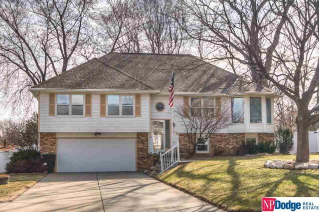 705 S Taylor Circle, Papillion, NE 68046 (MLS #21802660) :: Omaha Real Estate Group