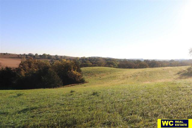 TL 17 County Road P10, Herman, NE 68029 (MLS #21818341) :: Complete Real Estate Group