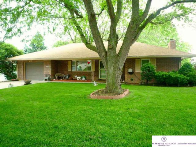 223 Pickardy Lane, Council Bluffs, IA 51503 (MLS #21902685) :: Dodge County Realty Group