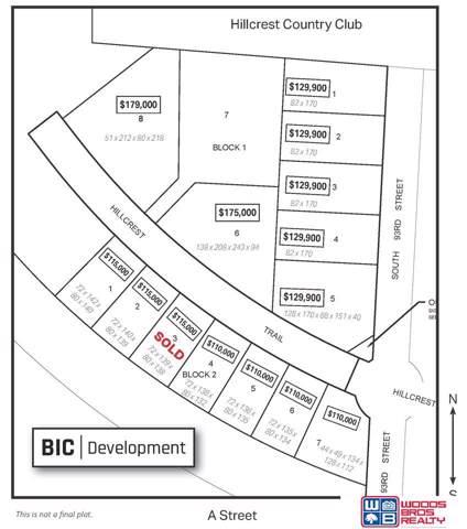 Blk 1 Lot 2 S 93rd Street, Lincoln, NE 68520 (MLS #21920124) :: One80 Group/Berkshire Hathaway HomeServices Ambassador Real Estate