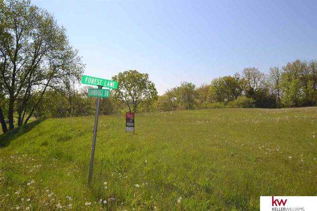 2403 Cambridge Drive, Plattsmouth, NE 68048 (MLS #21921897) :: Dodge County Realty Group