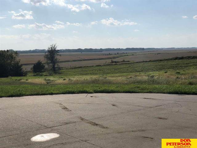 Piedmont Country Lot 9, Nickerson, NE 68044 (MLS #21923139) :: Dodge County Realty Group