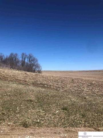 Land 3/4 Miles East Of Co Rd 15 & 28, Arlington, NE 68002 (MLS #21925114) :: The Briley Team