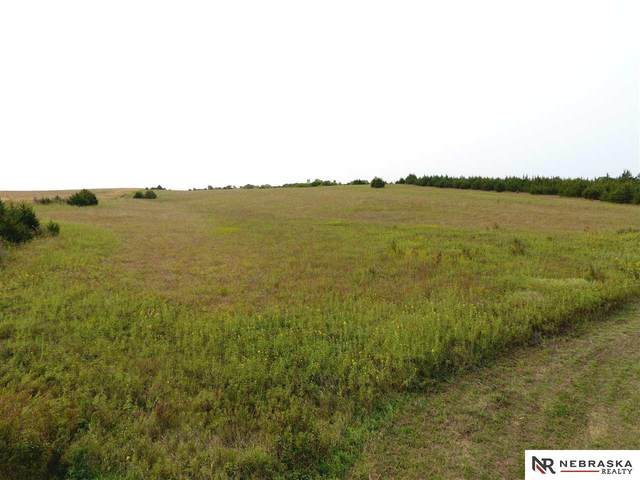 4801 Little Salt Road, Davey, NE 68017 (MLS #22023295) :: Lincoln Select Real Estate Group