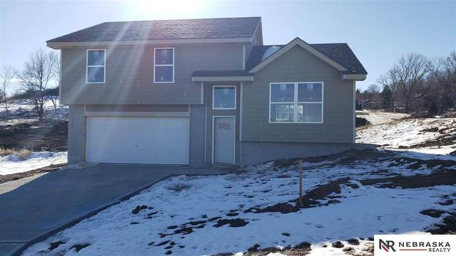 1445 Poulson Drive, Blair, NE 68008 (MLS #22025891) :: Capital City Realty Group