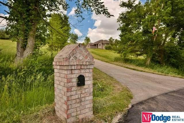 4019 Pioneer Road, Blair, NE 68008 (MLS #22112545) :: kwELITE