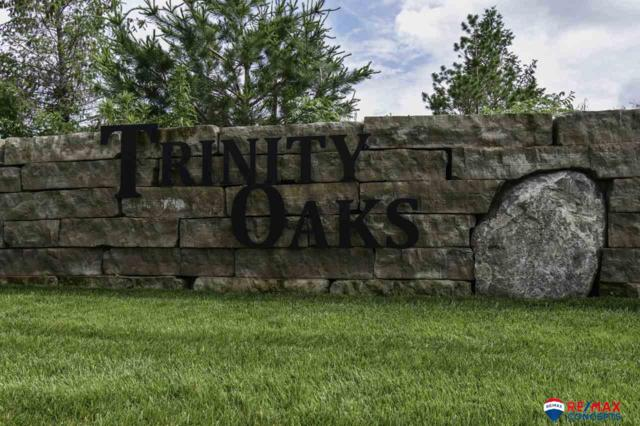 9601 S 60 Street, Lincoln, NE 68516 (MLS #L10137835) :: Omaha Real Estate Group