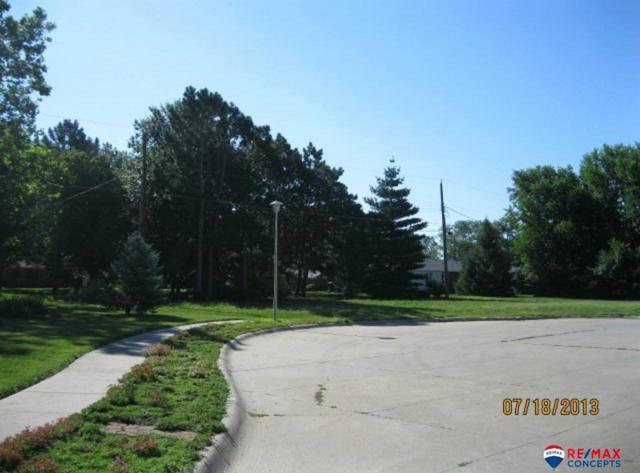 1095(TBD) Rainbow Avenue, Seward, NE 68434 (MLS #L10153886) :: Dodge County Realty Group