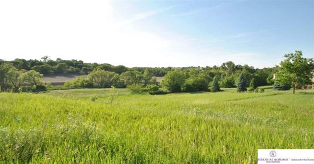 30 CR 37 Cottonwood Creek, Blair, NE 68008 (MLS #21621580) :: Omaha's Elite Real Estate Group