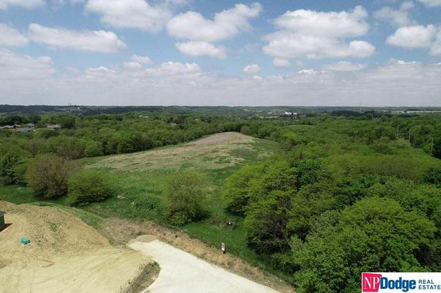 38 acres Steven Road, Council Bluffs, IA 51503 (MLS #21815722) :: Stuart & Associates Real Estate Group