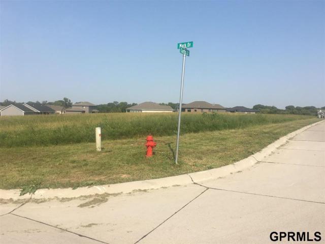 94 Mark Drive, Wahoo, NE 68066 (MLS #L10153812) :: The Briley Team