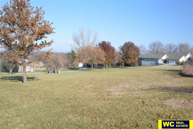 Lot 6 Maple Drive, Blair, NE 68008 (MLS #21711428) :: Omaha's Elite Real Estate Group