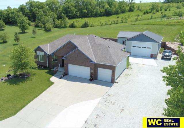 11599 Todd Drive, Blair, NE 68008 (MLS #21817608) :: Omaha's Elite Real Estate Group
