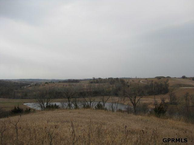 Lot 20 Crystal Lake Estates, Blair, NE 68008 (MLS #20614395) :: The Briley Team