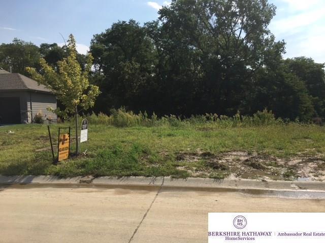 1719 Blue Sage Parkway, Elkhorn, NE 68022 (MLS #21713604) :: Omaha's Elite Real Estate Group