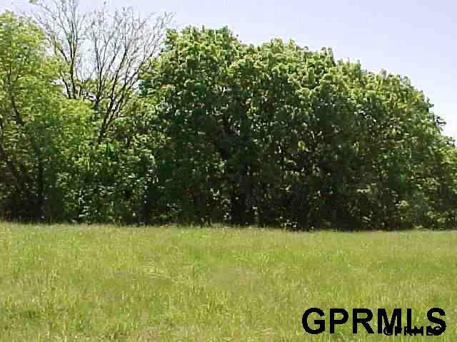 Lot 62 Eagle Ridge Acres, Missouri Valley, IA 51555 (MLS #21801149) :: Omaha's Elite Real Estate Group