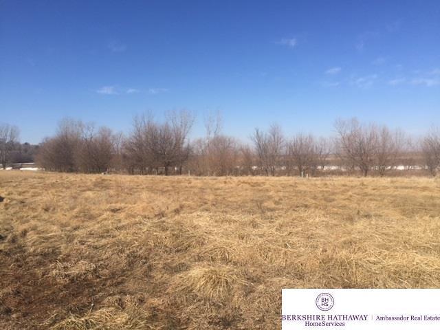 1162 Joann Drive, Blair, NE 68008 (MLS #21802843) :: Complete Real Estate Group