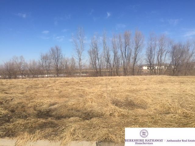 1140 Joann Drive, Blair, NE 68008 (MLS #21807775) :: Complete Real Estate Group